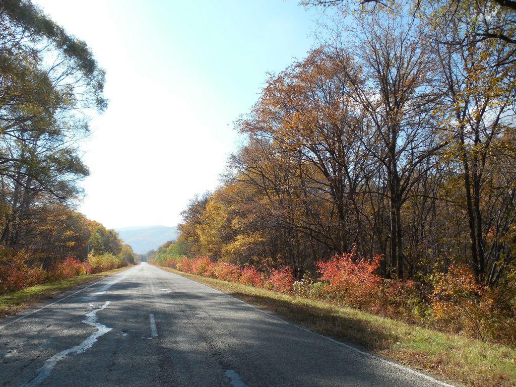 Осенние краски по пути в Ольгу