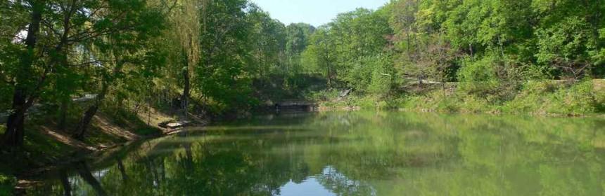 озеро на территории парка Седанка