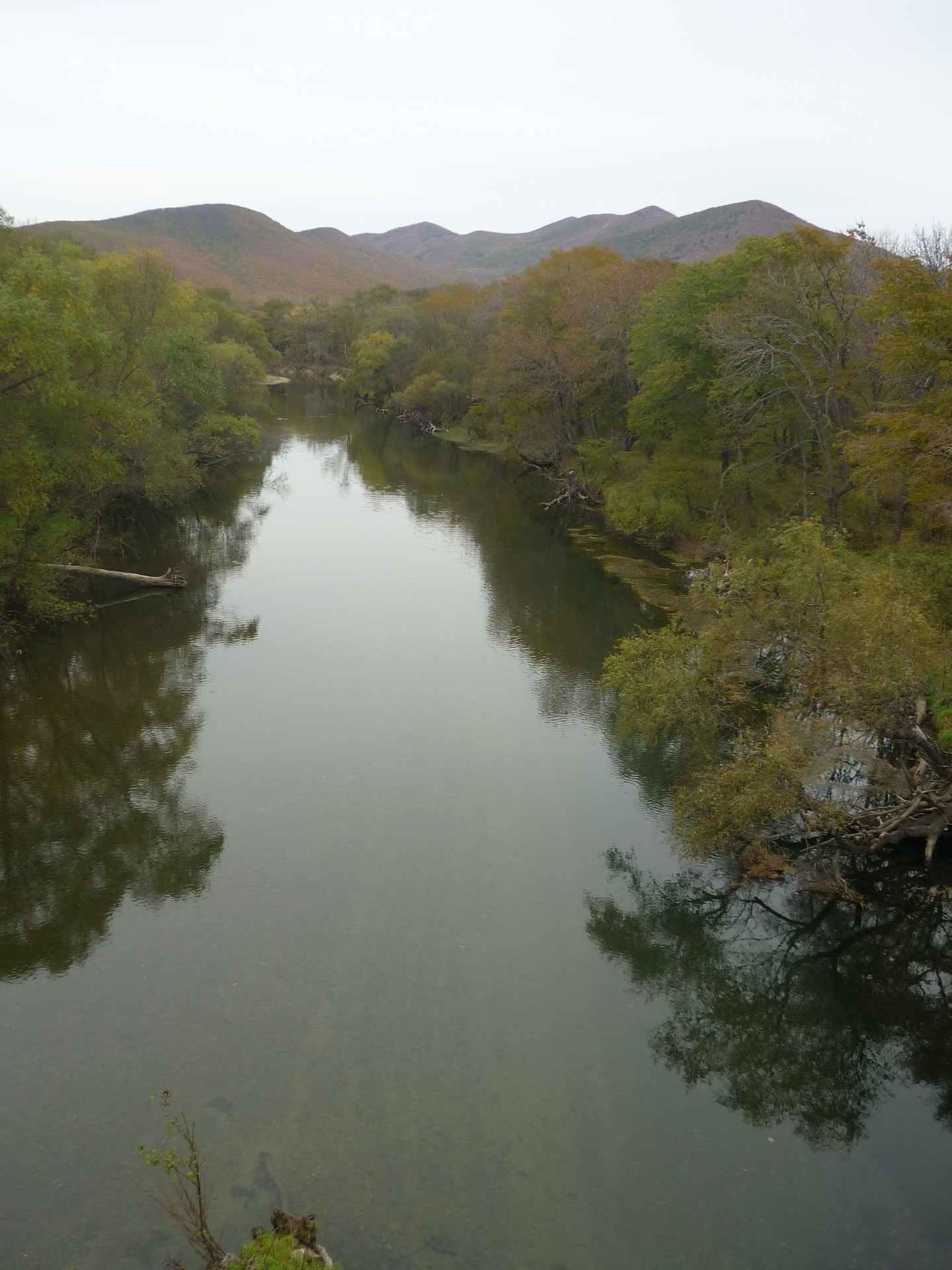 Река Аввакумовка вид с моста