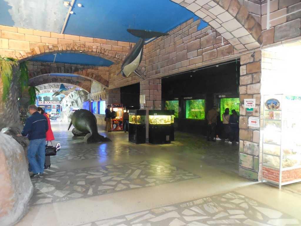 Внутри океанариума во Владивостоке на набережной