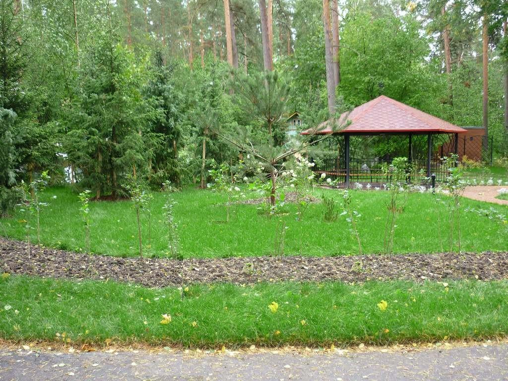 Санаторий в Зеленогорске