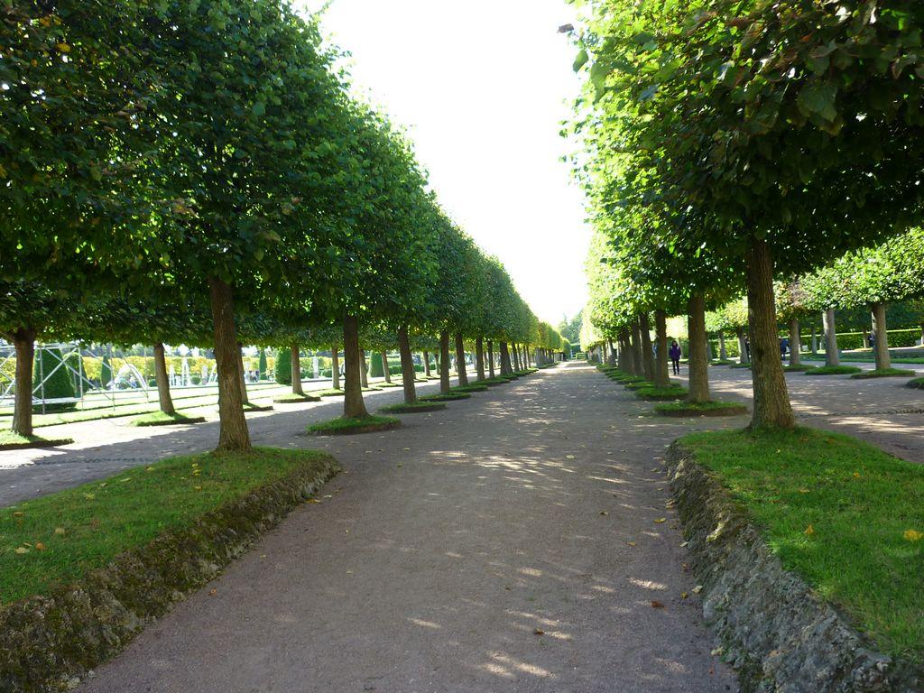 Верхний сад Петергофа