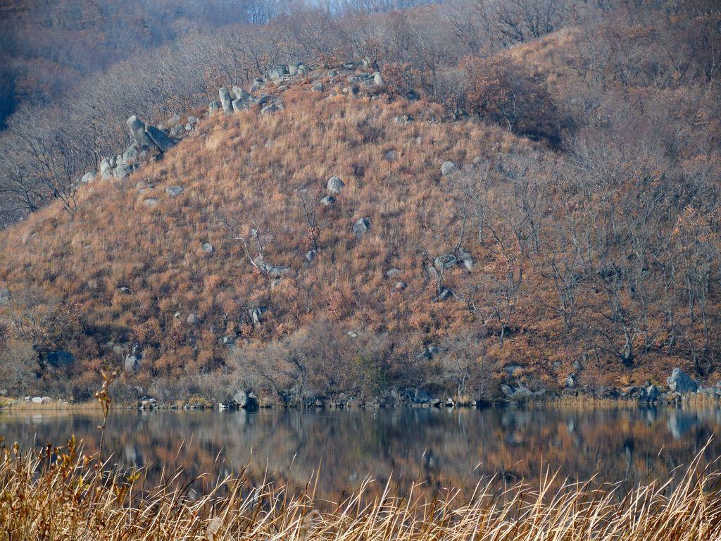 Шепалово камни у озера